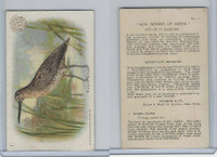 J4, Church & Dwight, New Series of Birds, 1908, #1 Robin Snipe