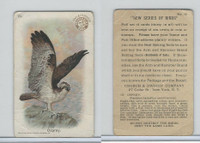 J4, Church & Dwight, New Series of Birds, 1908, #12 Osprey