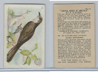 J5, Church & Dwight, Useful Birds America 1st Ser., 1915, #18 Black-bill Cuckoo