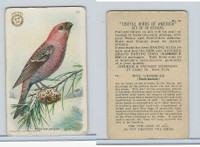 J6, Church & Dwight, Useful Birds America 2nd Ser., 1918, #16 Pine Grosbeak