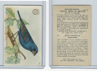 J6, Church & Dwight, Useful Birds America 2nd Ser., 1918, #25 Blue Grosbeak