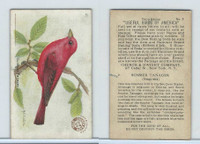 J7, Church & Dwight, Useful Birds America 3rd Ser., 1922, #2 Summer Tanager