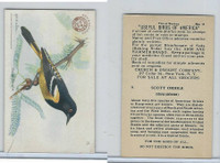J7, Church & Dwight, Useful Birds America 3rd Ser., 1922, #11 Scott Oriole