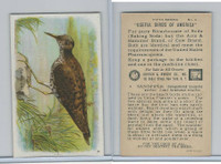 J9-1, Church & Dwight, Useful Birds America 5th Ser., 1925, #4 Sandpiper