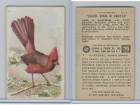 J9-1, Church & Dwight, Useful Birds America 5th Ser., 1925, #6 Cardinal
