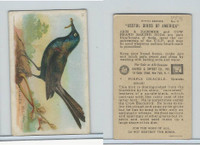 J9-1, Church & Dwight, Useful Birds America 5th Ser., 1925, #11 Purple Grackle