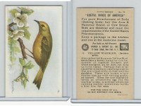 J9-1, Church & Dwight, Useful Birds America 5th Ser., 1925, #15 Yellow Warbler