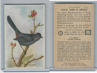 J9-2, Church & Dwight, Useful Birds America 6th Ser., 1925, #2 Catbird