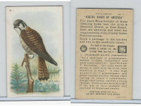 J9-2, Church & Dwight, Useful Birds America 6th Ser., 1925, #3 Sparrow Hawk