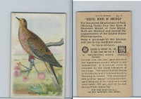 J9-2, Church & Dwight, Useful Birds America 6th Ser., 1925, #12 Mourning Dove