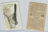 J9-3, Church & Dwight, Useful Birds America 7th Ser., 1925, #2 Mockingbird