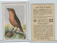 J9-3, Church & Dwight, Useful Birds America 7th Ser., 1925, #8 Crossbill