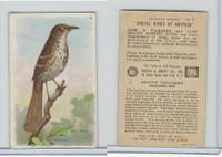 J9-3, Church & Dwight, Useful Birds America 7th Ser., 1925, #9 Brown Thrasher