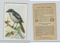 J9-3, Church & Dwight, Useful Birds America 7th Ser., 1925, #14 Loggerhead Shrik