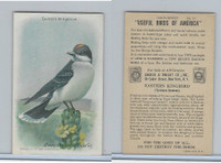 J9-5, Church & Dwight, Useful Birds America 9th Ser., 1925, #13 Kingbird