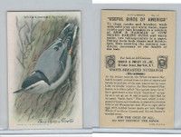 J9-5, Church & Dwight, Useful Birds America 9th Ser., 1925, #15 White-b Nuthatch