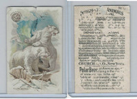 J10, Church & Dwight, Interesting Animals, 1897, #1 Polar Bears