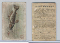 J15, Church & Dwight, Fish Series, 1900, #3 Horned Pout