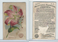 J16, Church & Dwight, Beautiful Flowers, 1895, #9 Japanese Lily