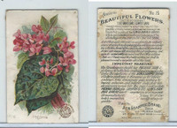 J16, Church & Dwight, Beautiful Flowers, 1895, #15 Begonia