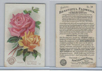 J16, Church & Dwight, Beautiful Flowers, 1895, #34 Roses, La France Tea Rose