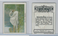C1 Imperial Tobacco, Birds, Beasts, & Fishes, 1923, #1 Mute Swan