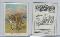 C1 Imperial Tobacco, Birds, Beasts, & Fishes, 1923, #10 Leopard