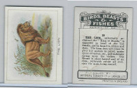 C1 Imperial Tobacco, Birds, Beasts, & Fishes, 1923, #29 Lion