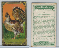 C14 Imperial Tobacco, Game Bird Series, 1910, #11 Ruffed Grouse
