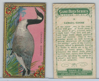 C14 Imperial Tobacco, Game Bird Series, 1910, #14 Canada Goose