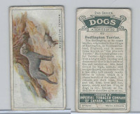 C8 Imperial Tobacco Company, Dog 2nd Series, 1920's, #40 Bedlington Terrier
