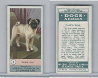 C7 Imperial Tobacco Company, Dog Series, 1920's, #2 Fawn Pug