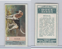 C7 Imperial Tobacco Company, Dog Series, 1920's, #11 Beagle