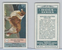 C7 Imperial Tobacco Company, Dog Series, 1920's, #14 Rough Coated Collie