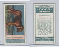 C7 Imperial Tobacco Company, Dog Series, 1920's, #22 Bloodhound