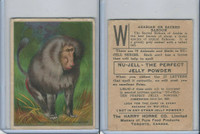 FC1, Harry Horne Co, Nu-Jell, Animals And Birds, 1925, Arabian Baboon