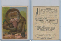 FC1, Harry Horne Co, Nu-Jell, Animals And Birds, 1925, Baboon