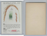 F213-3 Coca Cola, Nature Study, Trees & Plants, 1920's, #3 Rice
