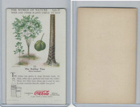 F213-3 Coca Cola, Nature Study, Trees & Plants, 1920's, #12 Rubber Tree