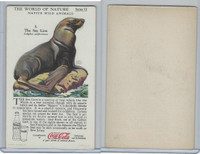 F213-3 Coca Cola, Nature Study, Wild Animals, 1920's,  #5 Sea Lion