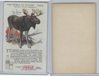 F213-3 Coca Cola, Nature Study, Wild Animals, 1920's,  #7 Moose