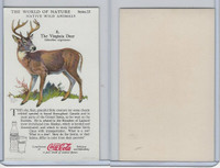 F213-3 Coca Cola, Nature Study, Wild Animals, 1920's,  #8 Virginia Deer