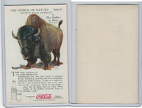 F213-3 Coca Cola, Nature Study, Wild Animals, 1920's,  #9 Buffalo or Bison