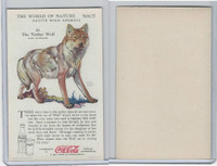 F213-3 Coca Cola, Nature Study, Wild Animals, 1920's,  #10 Timber Wolf