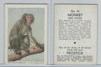 F55 Frostick, Animal Cards, 1933, #14 Red Faced Monkey