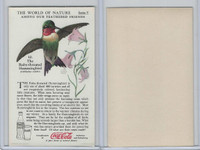 F213-3 Coca Cola, Nature Study, Birds, 1920's, #10 Ruby-Th. Hummingbird