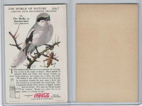 F213-3 Coca Cola, Nature Study, Birds, 1920's, #12 Shrike