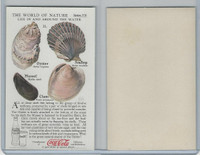F213-3 Coca Cola, Nature Study, Water Life, 1920's, #11 Shell Fish