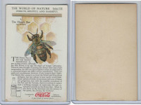 F213-3 Coca Cola, Nature Study, Insects, 1920's, #1 Honey Bee
