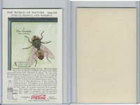 F213-3 Coca Cola, Nature Study, Insects, 1920's, #3 Housefly